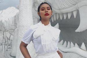 Блогеру грозит тюрьма за критику вкуса принцессы Таиланда