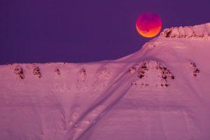 Землян ожидает кровавое волчье суперлуние в начале года