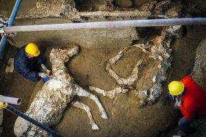 Археологи нашли в Помпеях еще одну офицерскую конюшню