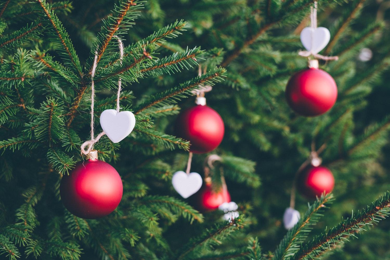 6 советов, как продлить жизнь новогодней елки