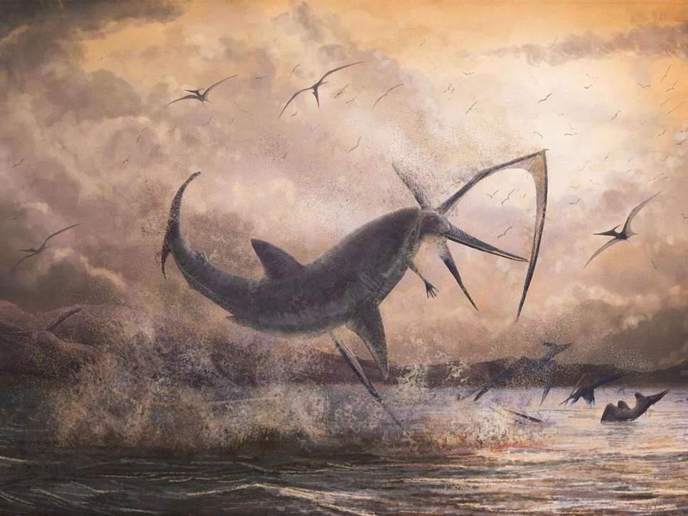 В шее птеранодона палеонтологи нашли зуб акулы