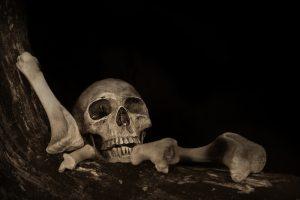 Чума появилась еще в каменном веке