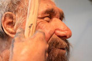 Удлиненная форма черепа - генетическое наследие неандертальцев