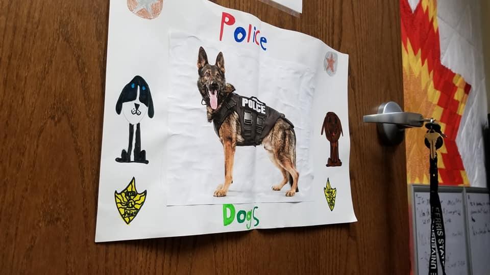 Полицейскую собаку обули в ботинки