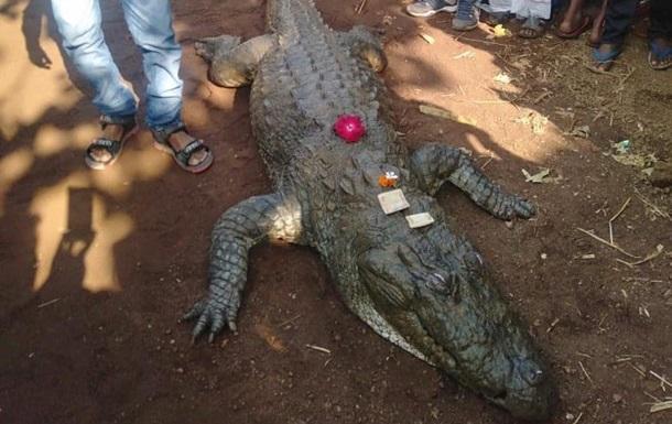 В Индии торжественно похоронили 130-летнего крокодила