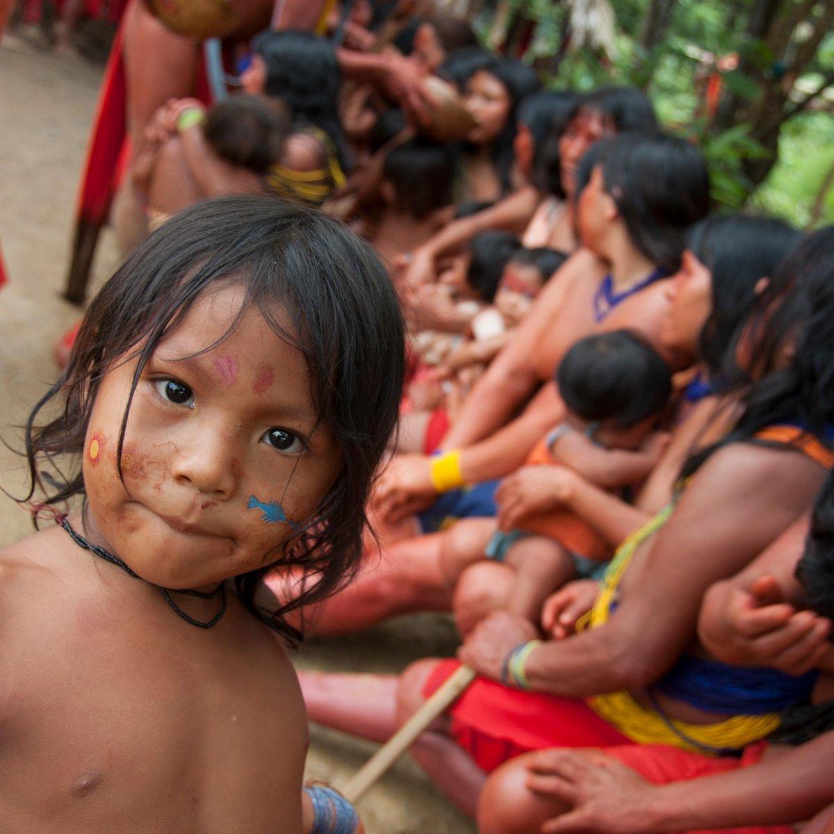 Индейское племя Бразилии может погибнуть из-за прорыва дамбы