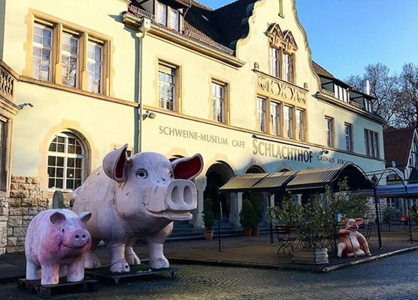 Музей свиней в Германии всем обещает счастье