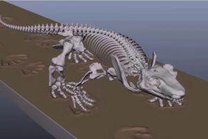 Ученые оживили скелет ящера возрастом 290 миллионов лет