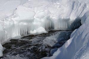 В Киеве прохожий спас провалившихся под лед бабушку и внучку