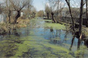 Десятки украинских городов может затопить к концу столетия