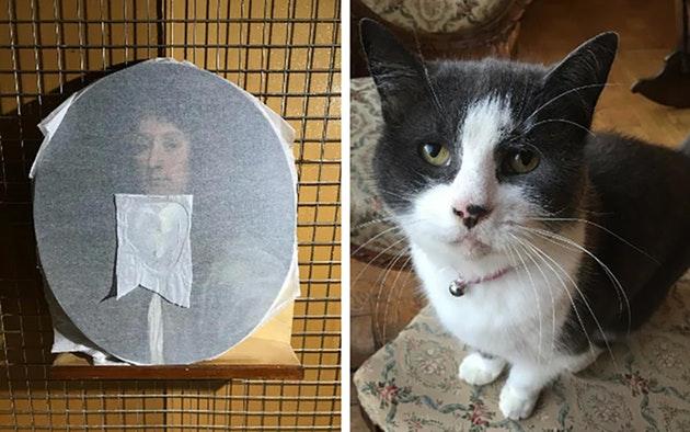Кошка искусствоведа испортила картину XVII века