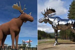 Норвегия и Канада спорят, у кого самая высокая статуя лося