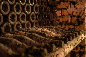 В Египте нашли античный винный погреб с монетами вместо вина