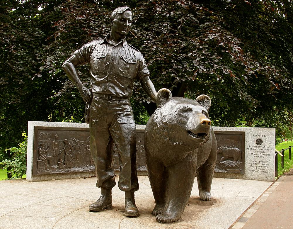 Медведь, который воевал: удивительная история одного медвежонка
