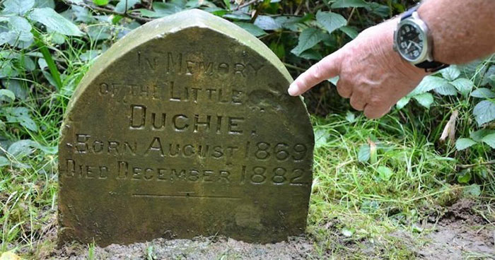 Британец нашёл могилу кролика возрастом почти 140 лет.Вокруг Света. Украина