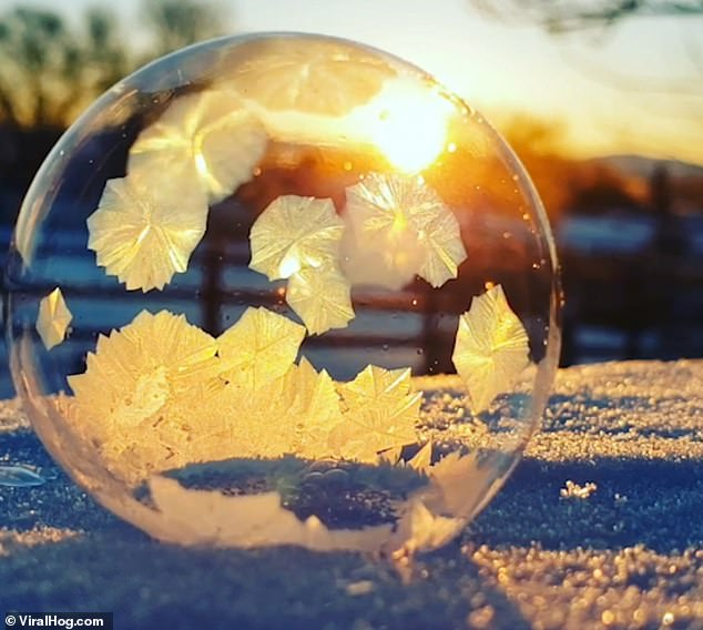В Неваде фотограф превратил мыльный пузырь в