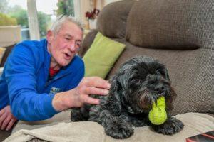 Собака вывела хозяина из комы и стала «врачом»