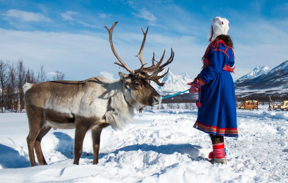 Прощайте, олени! Норвегия начинает добычу меди в Арктике