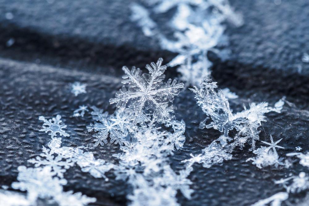 От чего зависит форма снежинки?.Вокруг Света. Украина