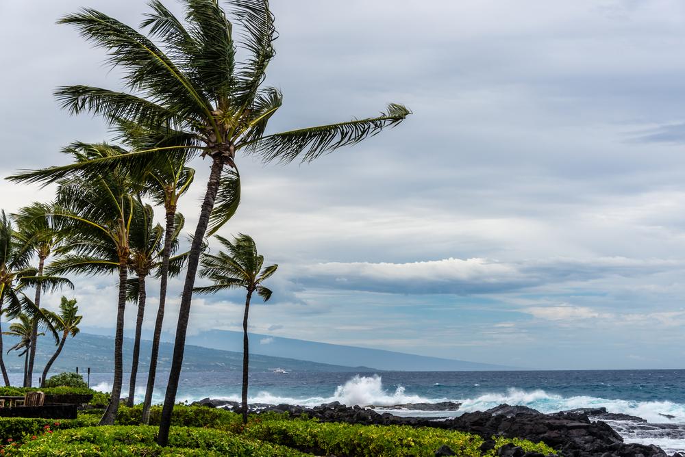 Гавайи накрыли 20-метровые волны
