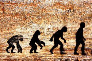 Человека заставил эволюционировать жир  — ученые