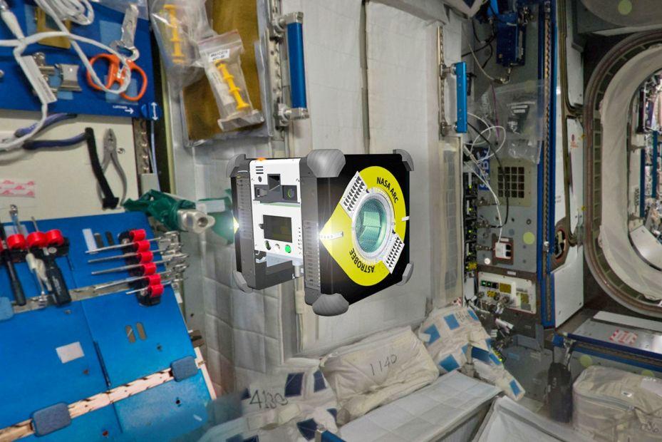 По МКС будет летать робот-пчела