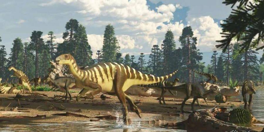 В Австралии нашли динозавра с челюстью, напоминающей испанский галеон.Вокруг Света. Украина