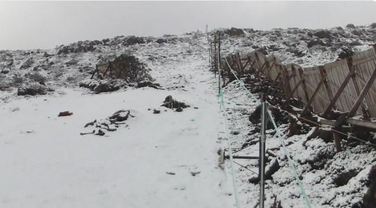 На австралийском острове выпал снег