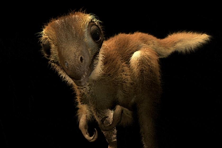 Ученые воссоздали внешний вид детенышей тираннозавра
