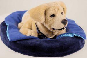 В США представили робота-щенка для больных деменцией