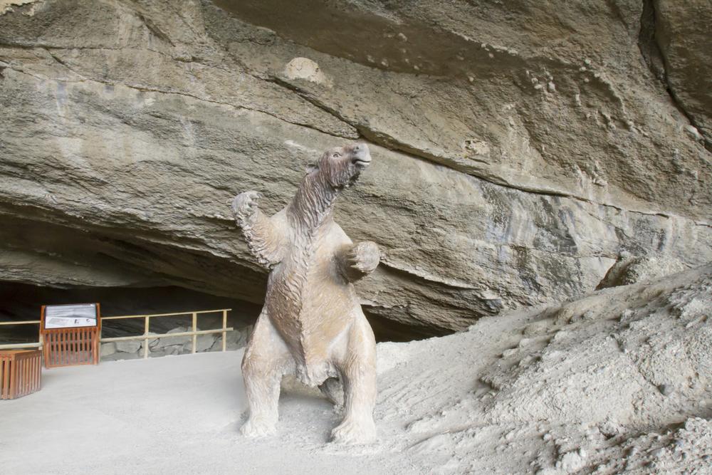 Секрет долгой жизни древних ленивцев — в диете