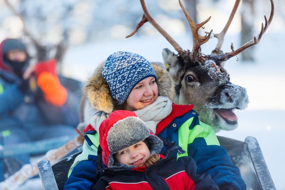 В Финляндии предлагают арендовать финна