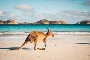 Через 30 лет в Австралии не будет зимы: климатологи