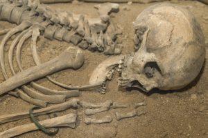 Неандертальцы стали каннибалами из-за глобального потепления