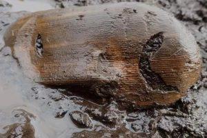 На Аляске нашли легендарное захоронение