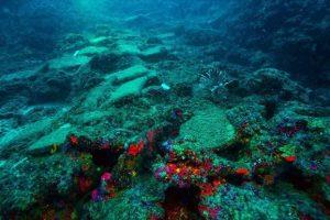 В Средиземном море нашли самый древний корабль на земле