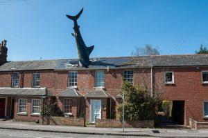 История дома в Оксфорде с торчащей из крыши акулой