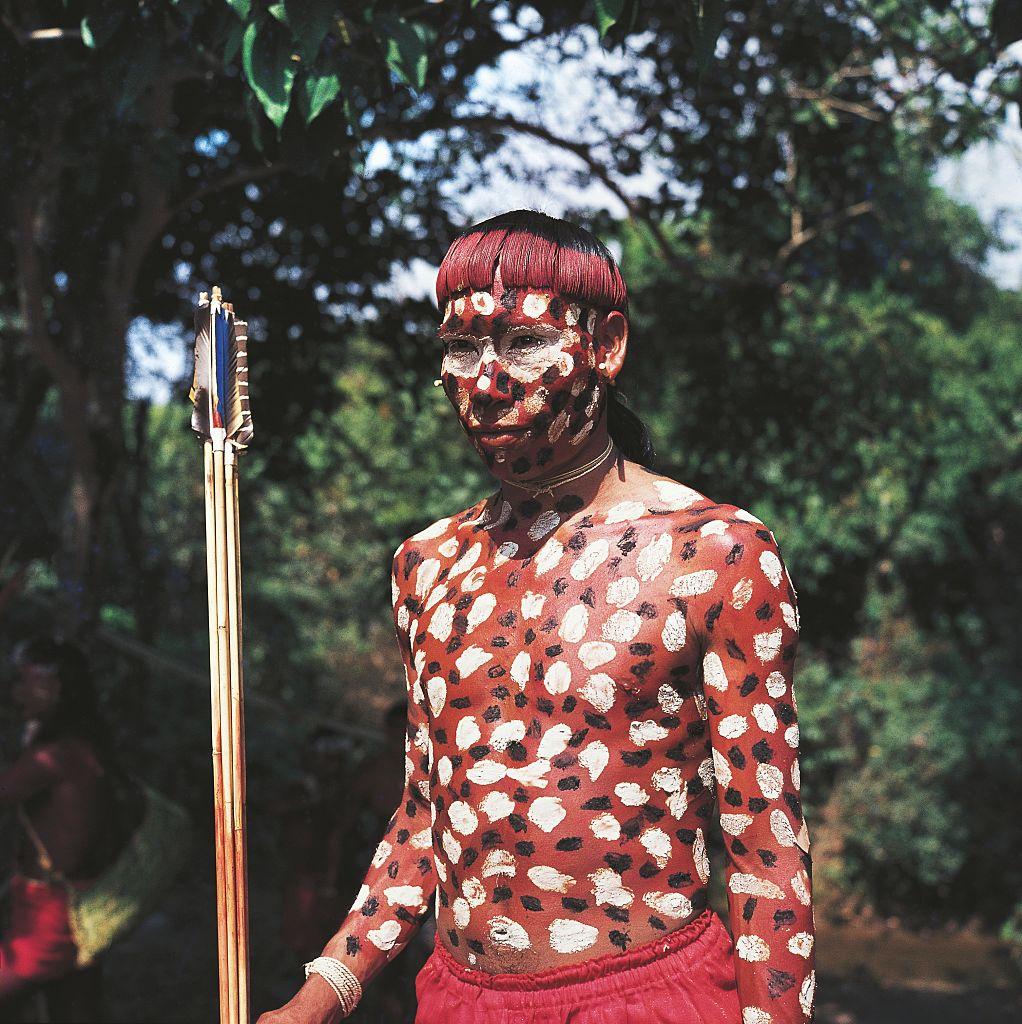 племя шаванте
