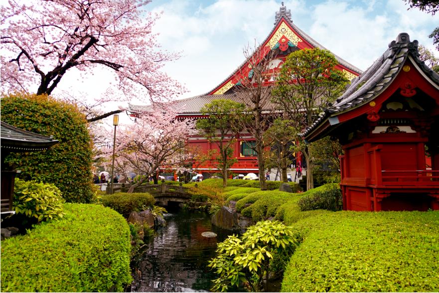Япония как вдохновение: чем заняться в Стране восходящего солнца