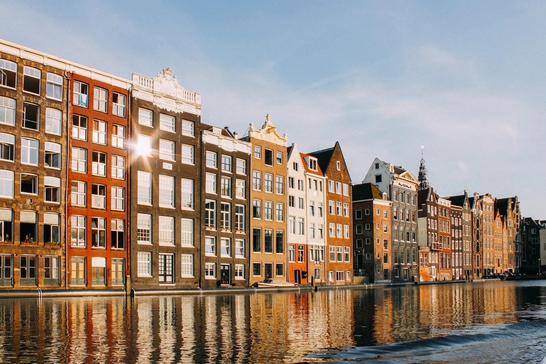 Собери тюльпаны – выиграй билет в Амстердам