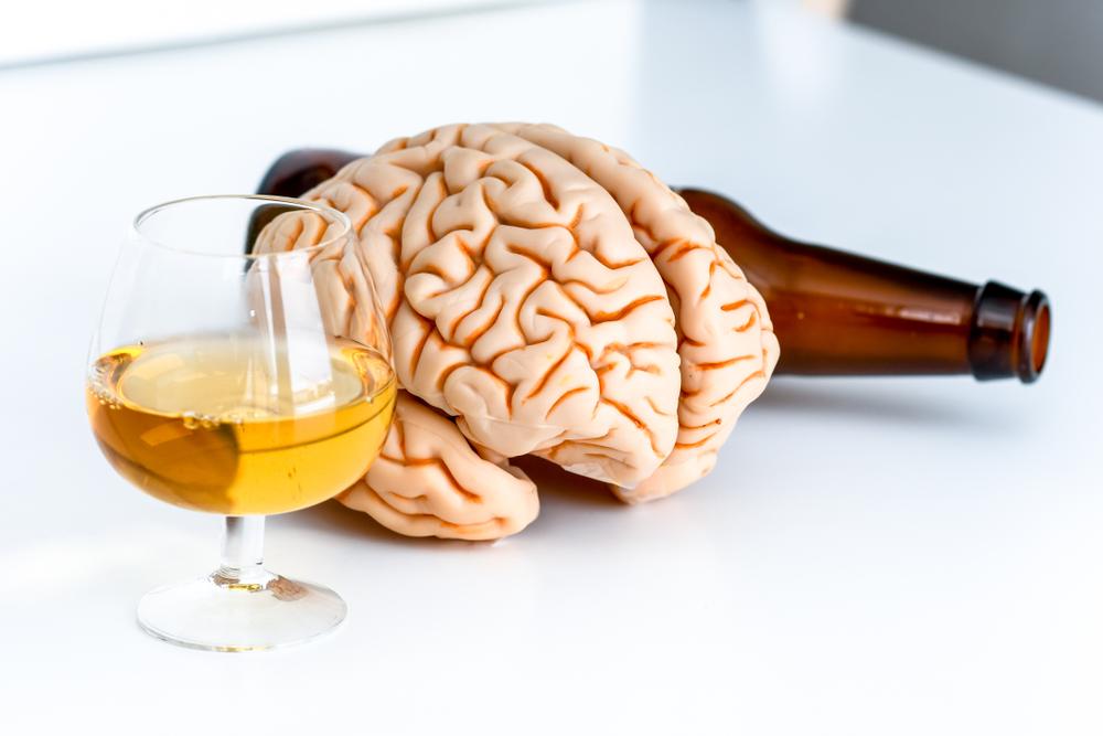 Алкоголь замедляет рост мозга у подростков