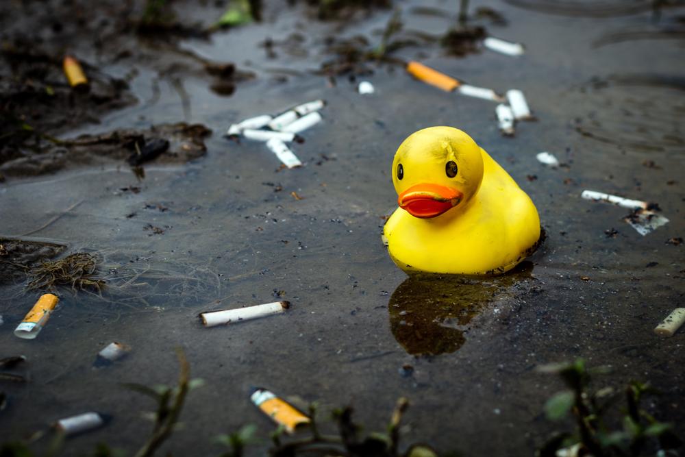 Созданы первые в мире сигареты, безвредные для природы