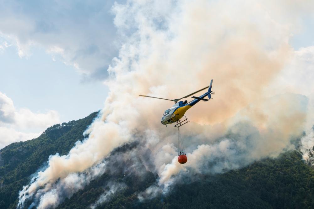 В Италии двух студентов оштрафовали на 27 млн евро за пожар в лесу