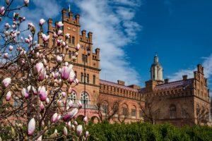 Топ-5 объектов ЮНЕСКО в Украине