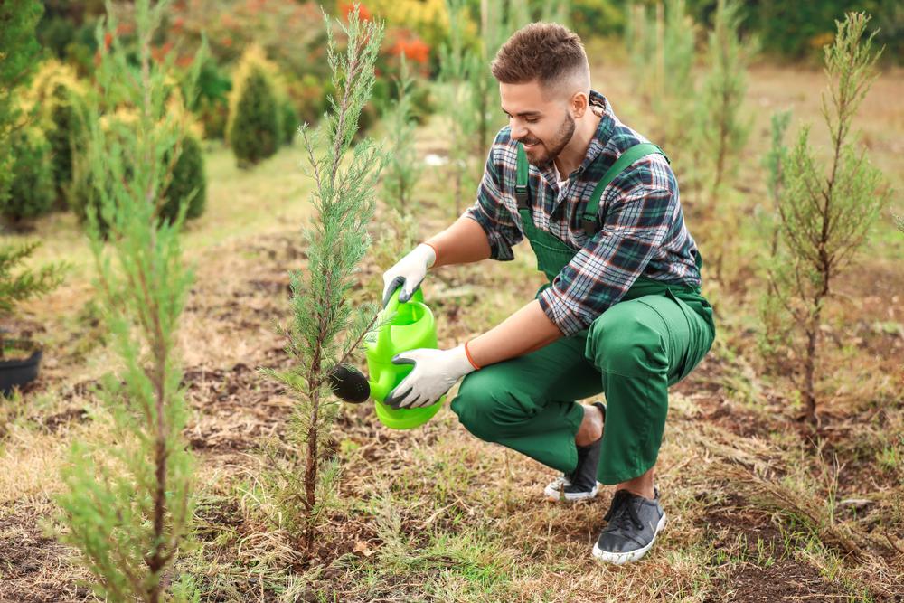 День окружающей среды в Украине