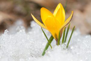Почему перед Пасхой всегда холодает: научное объяснение