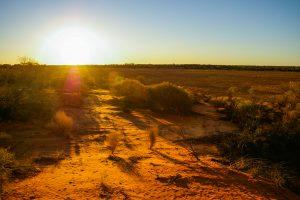 Австралия поставила исторический рекорд температур