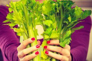 Продуктов с отрицательной калорийностью не существует — ученые