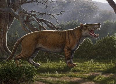 Палеонтологи обнаружили древнего льва, который был больше белого медведя