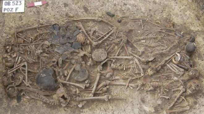 Польское захоронение рассказало о древней трагедии.Вокруг Света. Украина